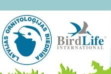 forum d'oiseaux !fleur Pavasa10