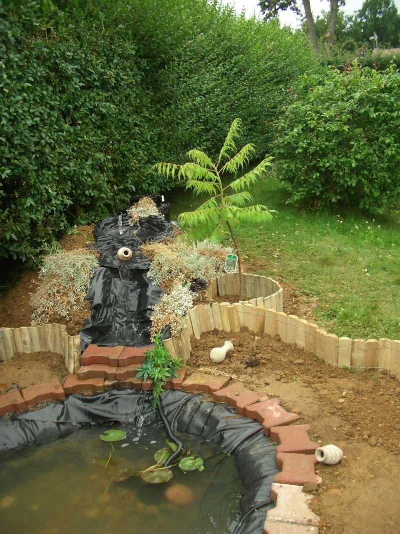 Construction de la  mare a tortues Cimg5513