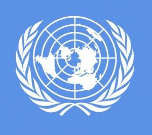 L'Organisation des Nations Unies - L'ONU Aaaaaa10