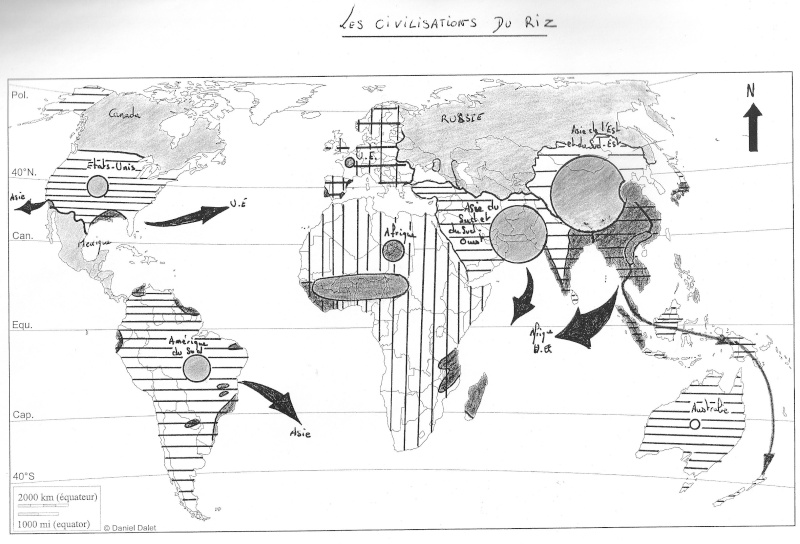 Les civilisations du riz Croqui10