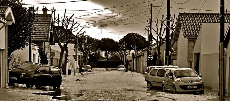 Photographie : La Rochelle après le passage de Xynthia Imgp1820