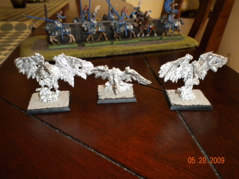 Warhammer Fantasy Pistoliers and  Knights and More. Tom_fo11