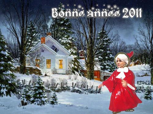 Bonne année 2011 ! Bonne-10