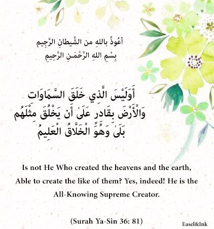 Gems Of The Heart - Shaikh Ibrahim Zidan - Page 4 S36a8110