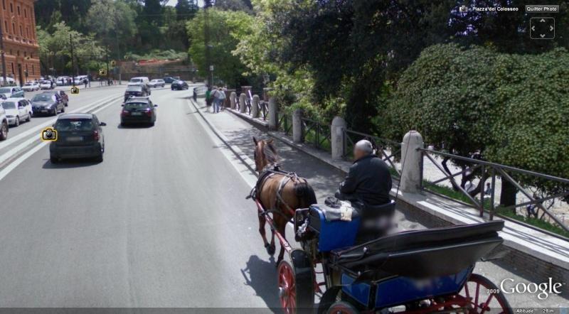 STREET VIEW : Les carrosses, les calèches dans le monde - Page 2 Cheval10