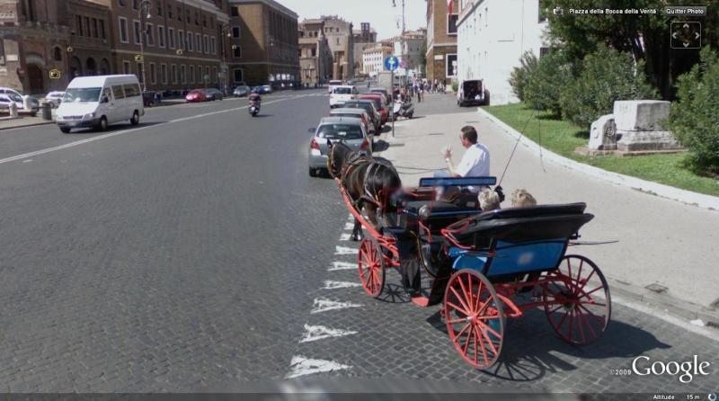 STREET VIEW : Les carrosses, les calèches dans le monde Cheval13