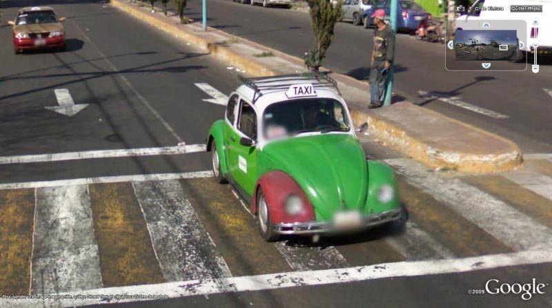 STREET VIEW : Les coccinelles Cocci10