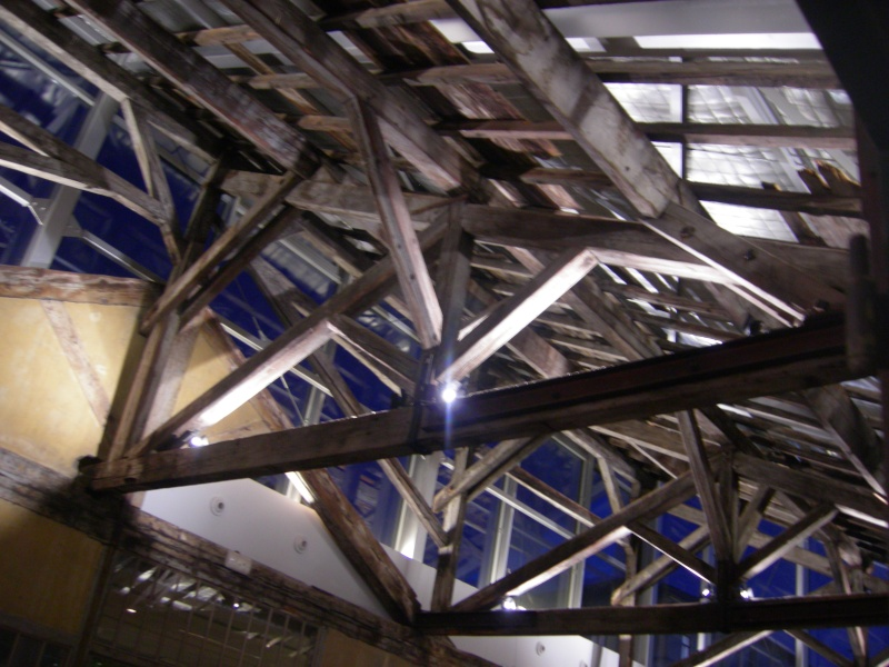 Institut Lumière, Cinémathèque de Lyon, France Dscn1312
