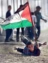 فلسطين الحبيبة 368-5112