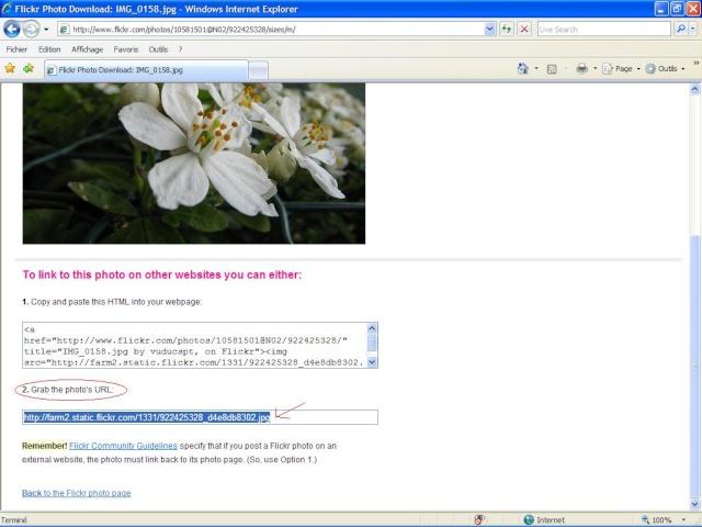 Cách chèn hình ảnh vào bài viết Flick312