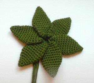 Móc hoa Poinse16