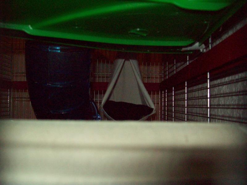 Ma cage et mes bricoles Photo_17
