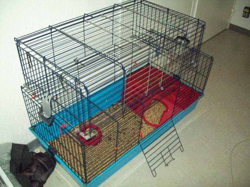 Cage pour rats ou autres... Photo_49