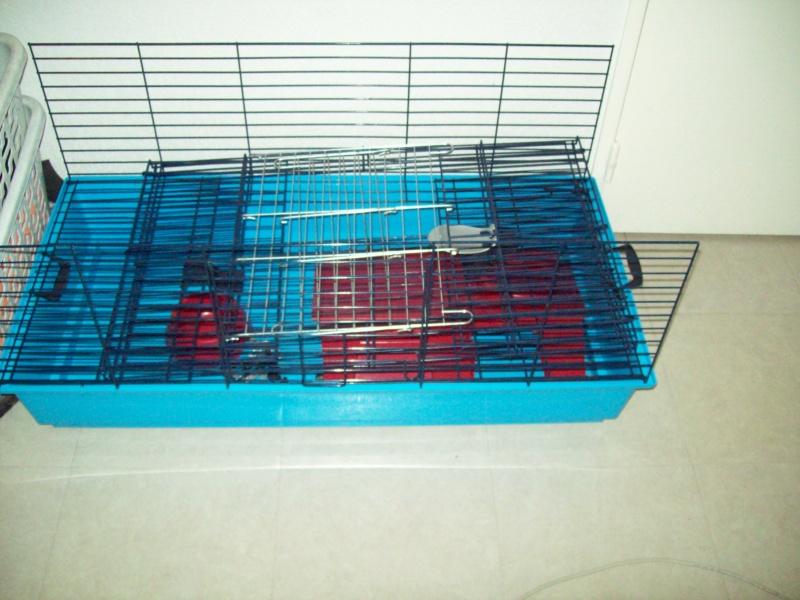 Cage pour rats ou autres... Photo_50