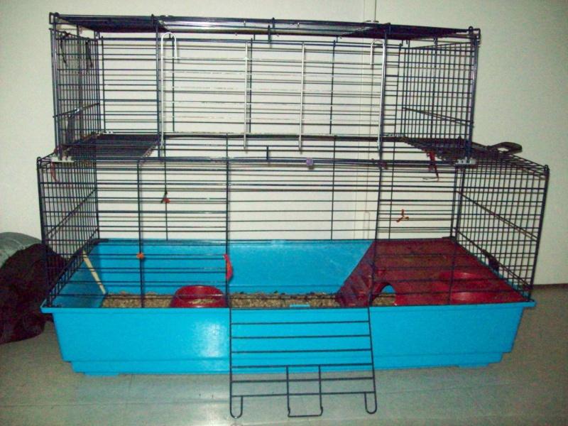 Cage pour rats ou autres... Photo_53
