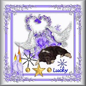 Une étoile va briller ce soir dans notre ciel, Lucky Hommag10