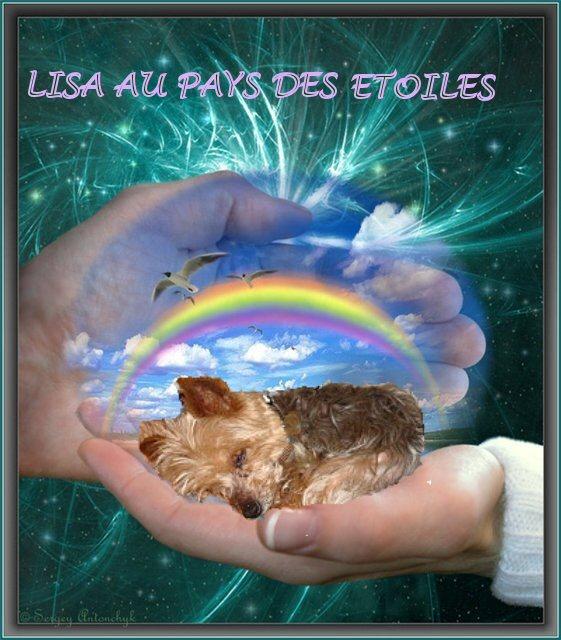 Lisa ma petite puce - Page 3 Lisa_a10