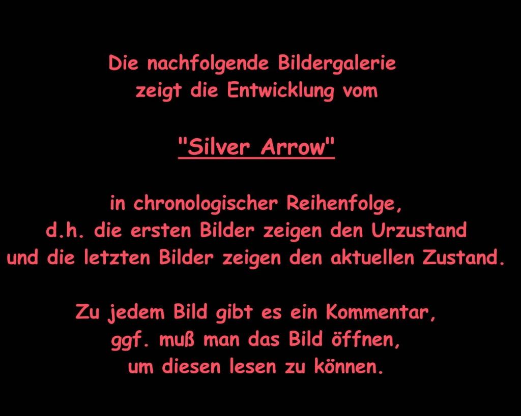 Silver Arrow stellt sich vor 110
