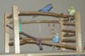 JEUX et LIEUX FAVORIS de nos oiseaux Pepoe11