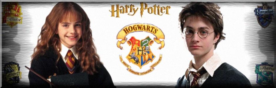 O Mundo de Harry Potter
