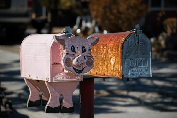 Images pour Piggy ! - Page 2 Image_10