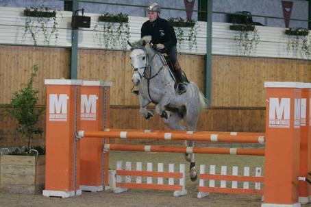 URGENT vols de chevaux belgiques 8810