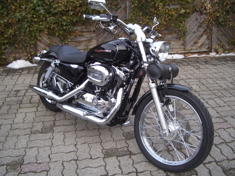 combien sommes nous en 1200 Sportster sur Passion-Harley Cimg3916