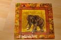 Cadre Elephant 02052017
