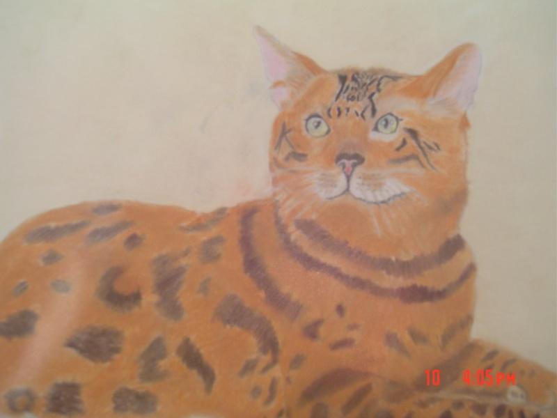 Quelques dessins de moi !^^ Maou10