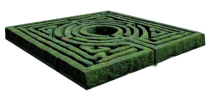 Bonsai Maze Maze10