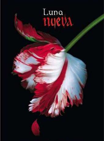 LUNA NUEVA (wikipedi-spoilers) 20090310