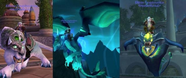 Screens - de la guilde HorDeMaVuE en 2009 ! Elfatt10