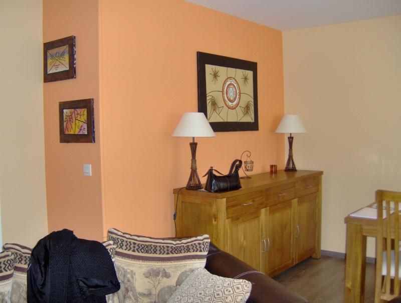 disposition des couleurs pour ma salle(résultat page 2) Appart25