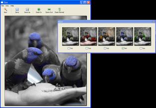 Tint evidenzia il colore che vuoi nelle foto Tint_s10