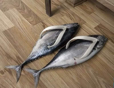 Sepatu-sepatu aneh! A272_s11