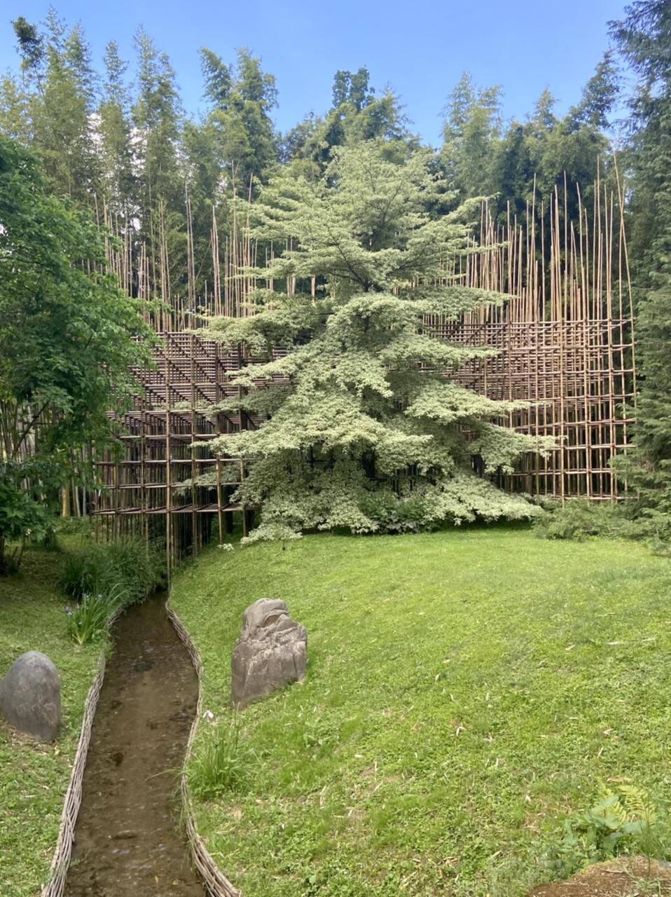 La Bambouseraie d'Anduze 22ec8e10