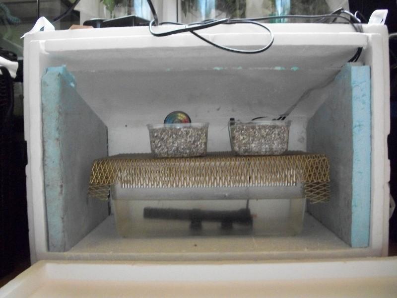 (Tutoriel) Fabrication d'un Incubateur. 100_0010
