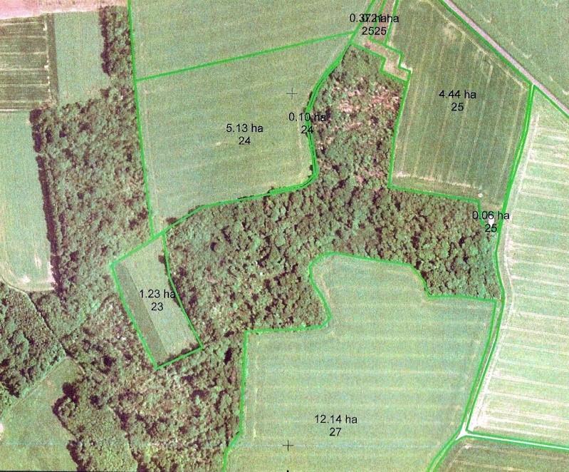 Description terrain Bignon Mirabeau et règles de bases Bignon11