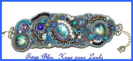 Swap Bleu Mo010113