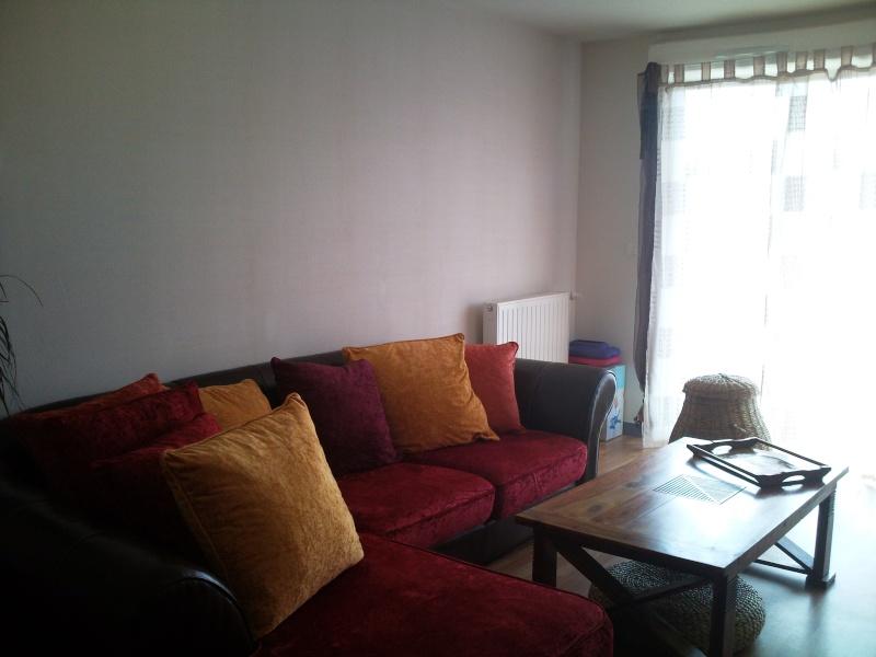 Quelle couleur pour mon salon? 00110