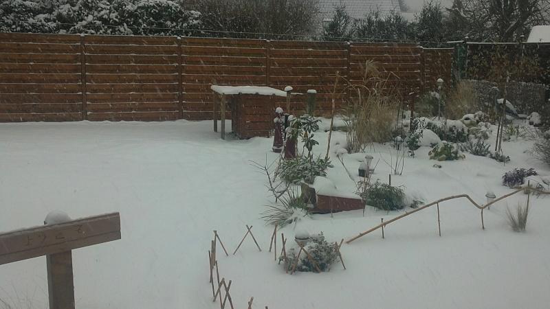 petites photos ce jour de neige et de GRAND FROID !!!!!! 04122010