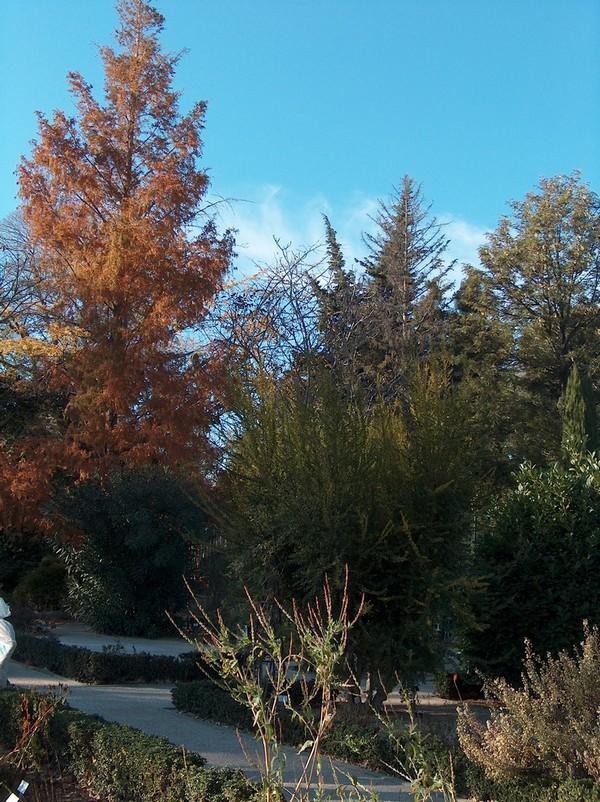 Le parc Borély à Marseille Hpim5818