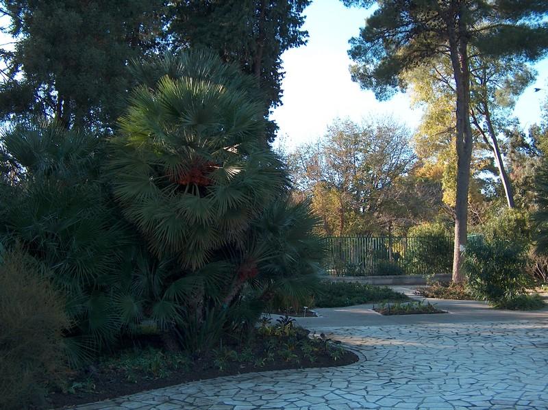 Le parc Borély à Marseille Hpim5914