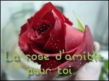 Le jeu des 10 roses - Page 7 Bcvhw910