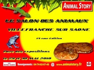 Calendrier des Bourses 2010 Animal10