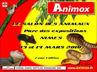 Calendrier des Bourses 2010 Animox12