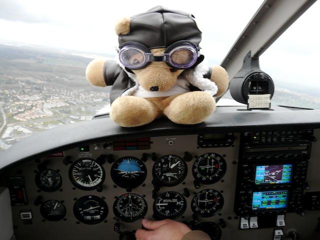 Les vols de la mascotte - Page 4 P1030311