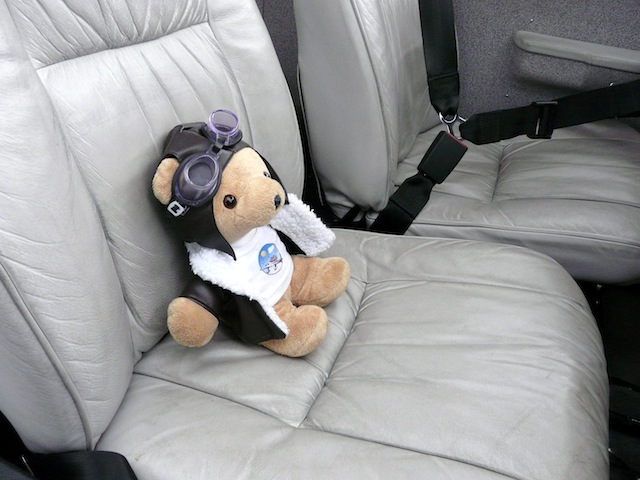 Les vols de la mascotte - Page 4 P1030313