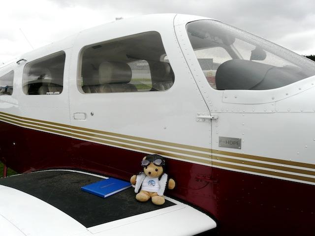 Les vols de la mascotte - Page 4 P1030314