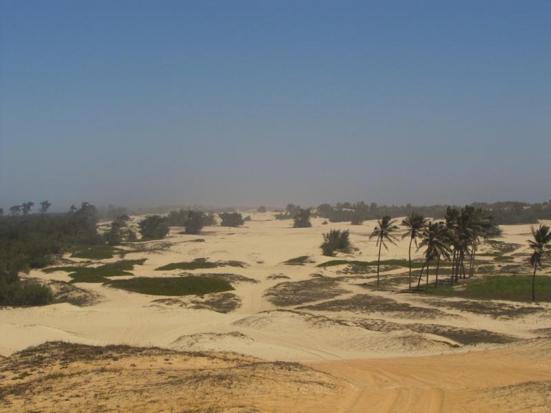 voyage au Sénégal  Img_3010